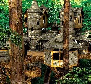 [عکس: treehouse2a.jpg]
