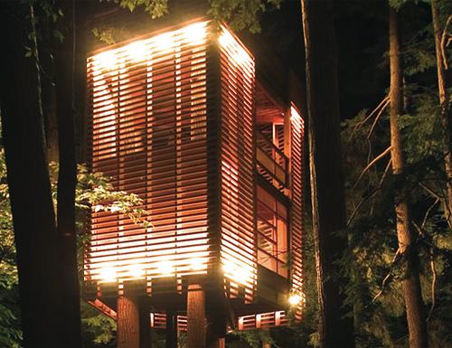 [عکس: treehouse4.jpg]
