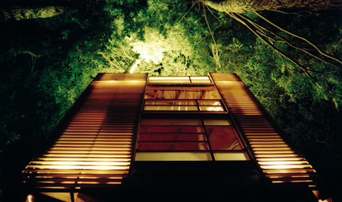 [عکس: treehouse4a.jpg]