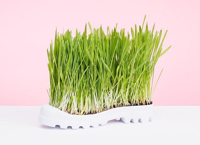 Туфли для садовода от PUTPUT