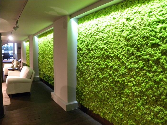 Декор стены живыми растениями для тех, у кого нет места для горшков с цветами