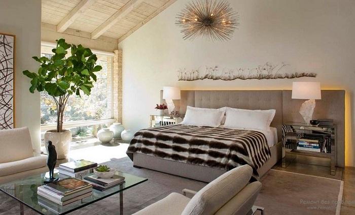 Комнатные растения создадут уют в доме