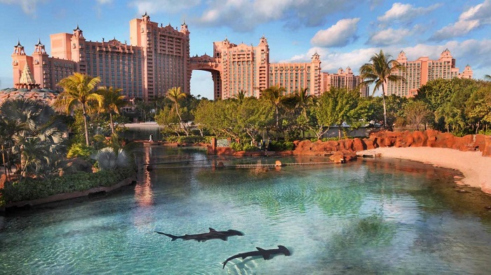 Atlantis Paradise Island Resort (остров Парадайз)