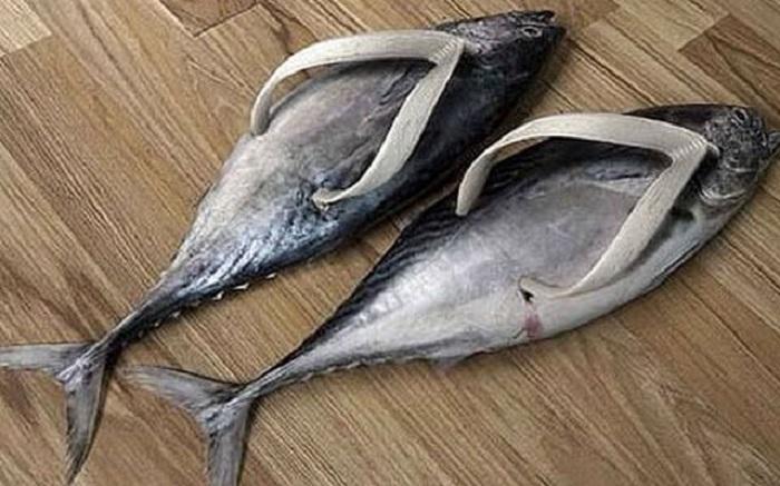 Вьетнамки-рыбки
