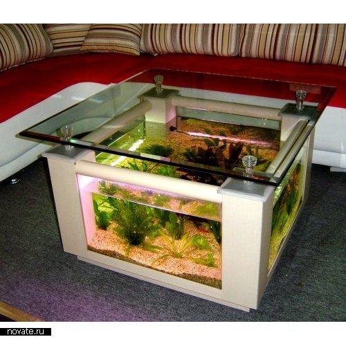 Морские аквариумы своими руками