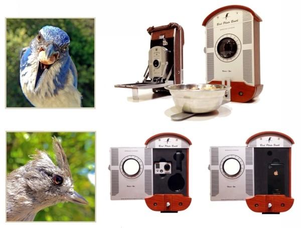Bird Photo Booth. Фотобудка и кормушка для птиц от Брайсона Лаветта (Bryson Lovett)
