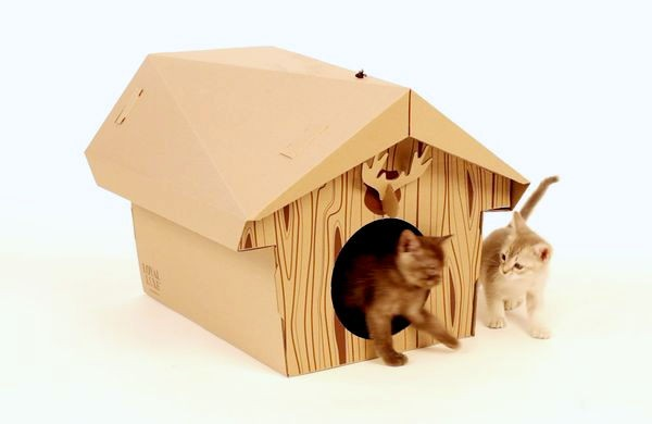 Canadian Cat Cabin, ��� ������������ ������� ����� �� �������