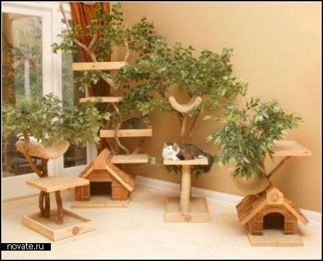 Кошкин дом с собственным деревом
