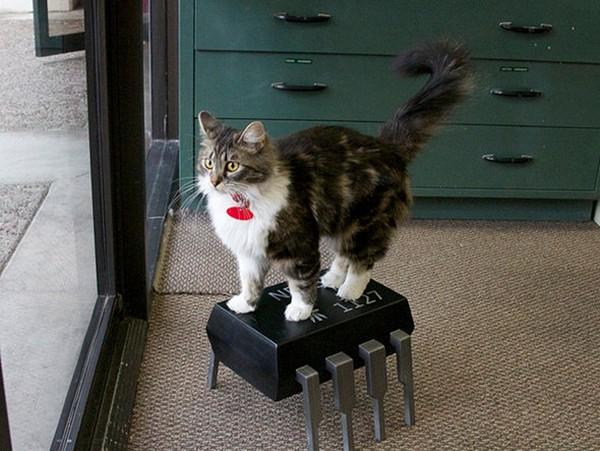 Скамеечка для ног 555 timer chip
