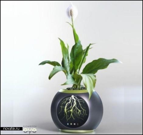 Концепт Eye Flowerpot как способ подглядывать за растениями