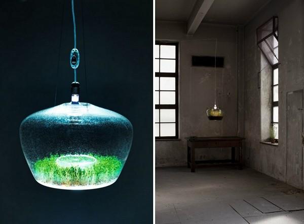 Glasshouse, светильник-парник с рассадой внутри