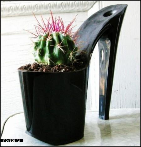 Кактусы в туфлях. Цветочные горшки Stiletto Heels Planters