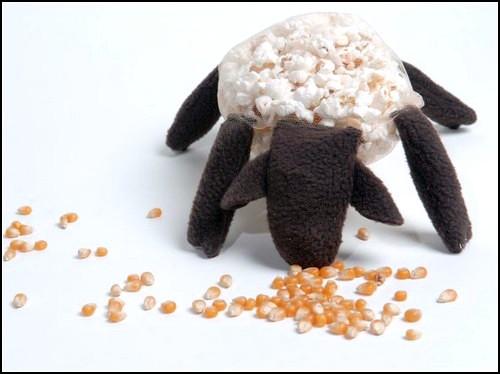Овца с попкорном, или проект Hot Rachel