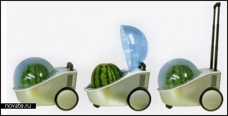 Watermelon cooler. Холодильник-грелка для арбуза