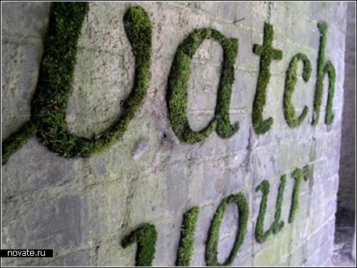 Замшелые граффити на каменных стенах