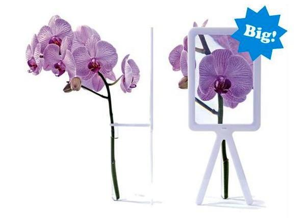 Вазы Big Bloom, увеличивающие цветы