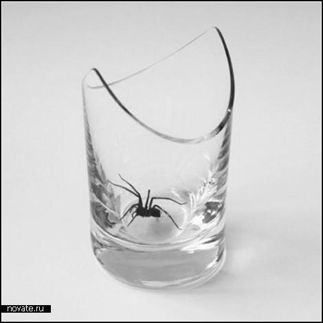 Cornered, или Ловушка для пауков