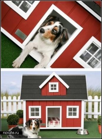 Дизайнерские собачьи будки от Best friend's Home