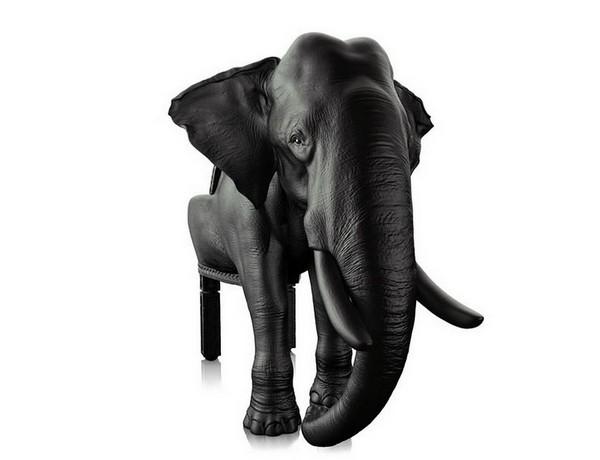 Elephant chair, стул из джунглей от Maximo Riera