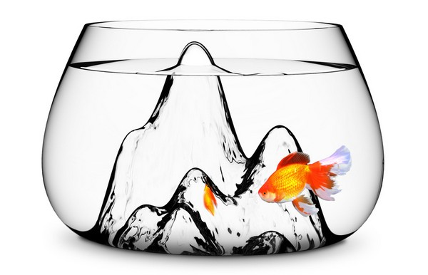 Fishscape Fishbowl, *горный* аквариум для рыбки-единоличницы