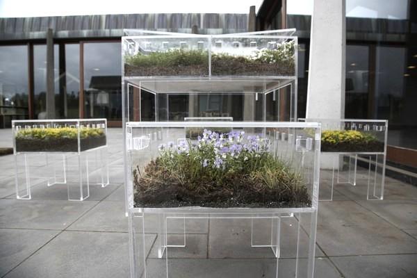 FurniBloom, дизайнерская мебель-клумба из акрила