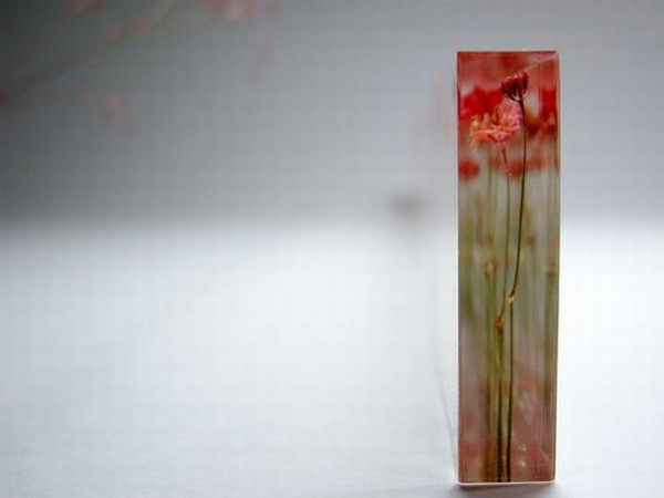 Линейка Flowers, вид сбоку