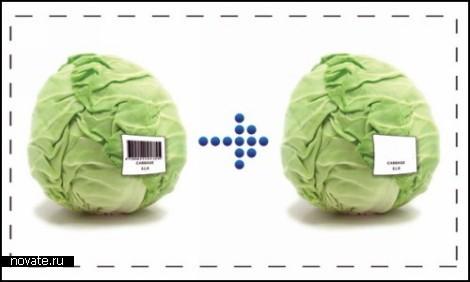 Проект Fresh Code. Концептуальный *код свежести* для продуктов питания