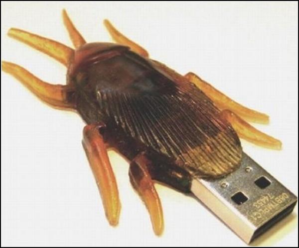Флешка-таракан