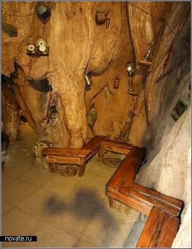 Новые *внутренности* древнего дерева