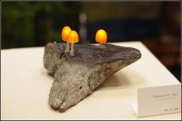 Живые материалы. Необычный дизайн светильников от ChilliChilly