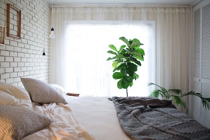 Комнатные растения добавляют спальне уюта. / Фото: Dekormyhome.ru