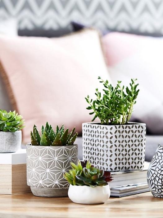 Керамические горшки в одном стиле станут украшением интерьера. / Фото: pinterest.de