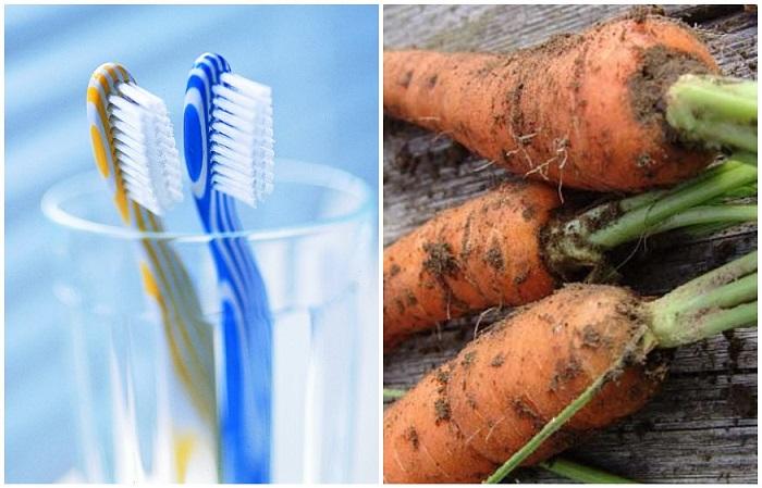 Чистые овощи хранятся гораздо дольше