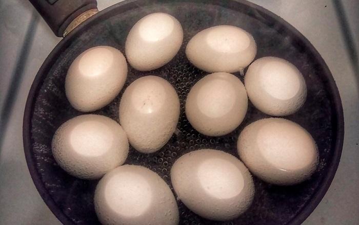 Яйца быстро жарятся в сковороде. / Фото: kto-chto-gde.ru