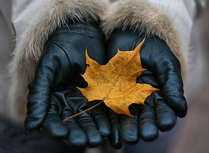 С первыми холодами нужно надевать перчатки. / Фото: sotymarket.ru