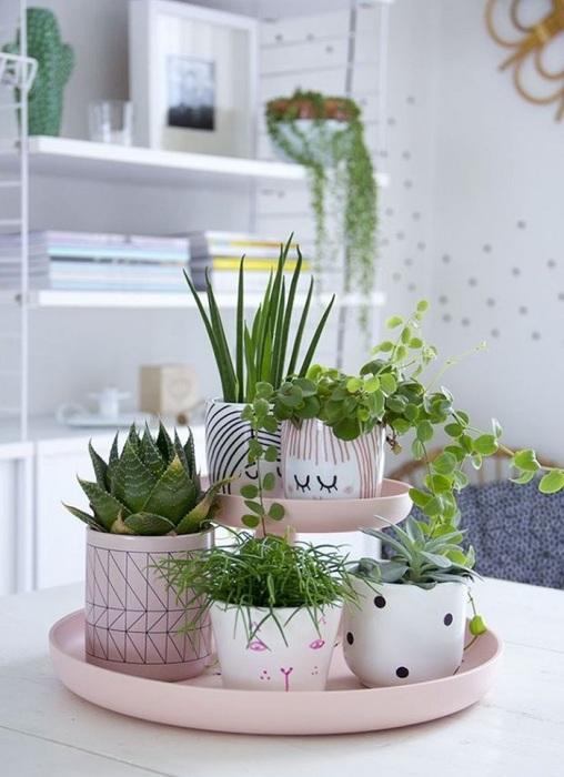 Комнатные растения будут уместны в любом интерьере. / Фото: yellowhome.ru