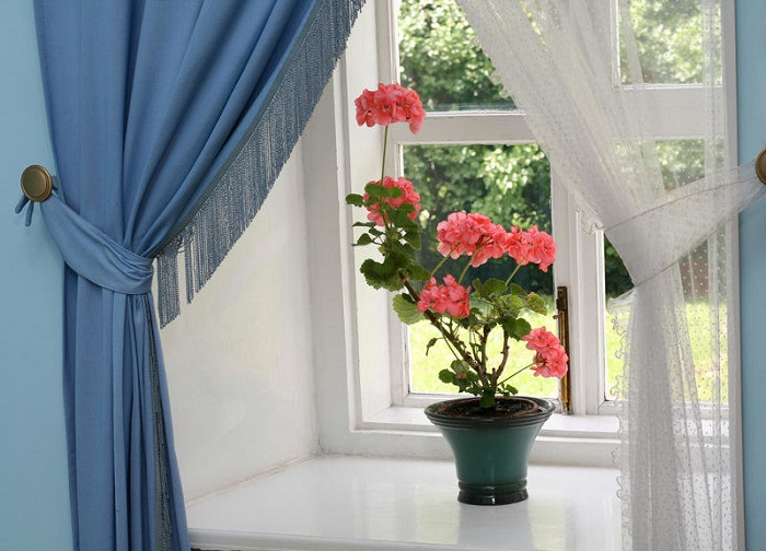 За закрытыми шторами цветам будет очень жарко. / Фото: Pinterest.de