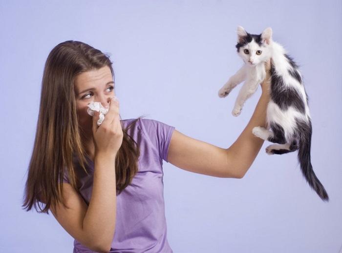Неприятный запах может свидетельствовать о проблемах со здоровьем у питомца. / Фото: twimg.com