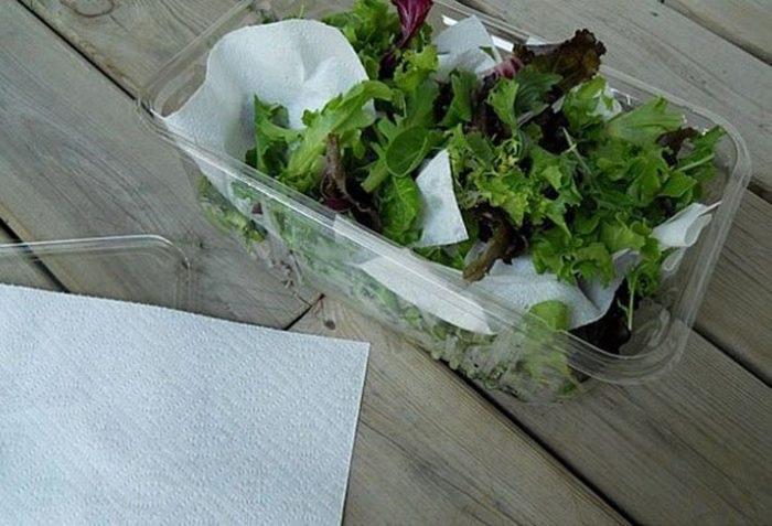 Зелень нужно хранить в бумажном полотенце. / Фото: mirtesen.ru