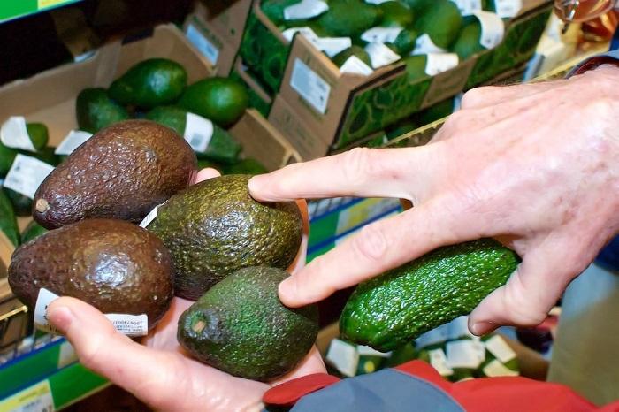 Цвет авокадо - не главный показатель спелости. / Фото: Fruitnews.ru