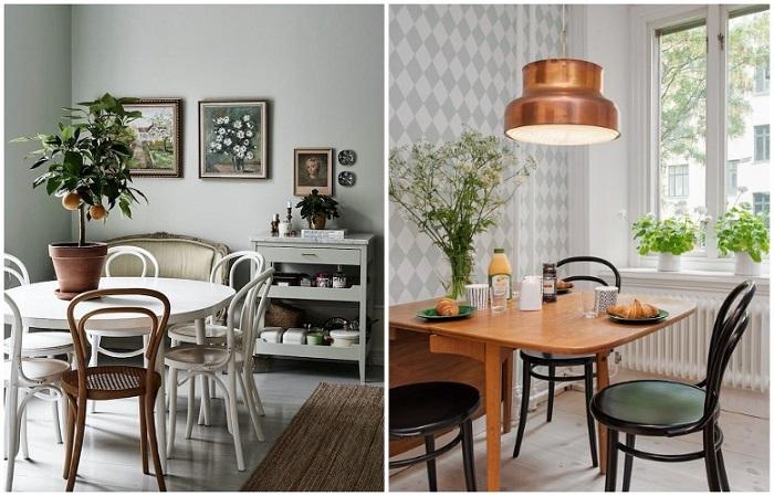 Венские стулья прекрасно вписываются в современный интерьер