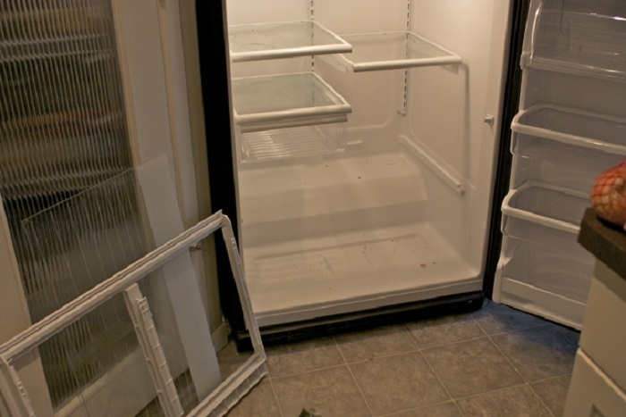 Плесень может поселиться под холодильником из-за скопившихся пыли и грызи. / Фото: ariston.co.ua
