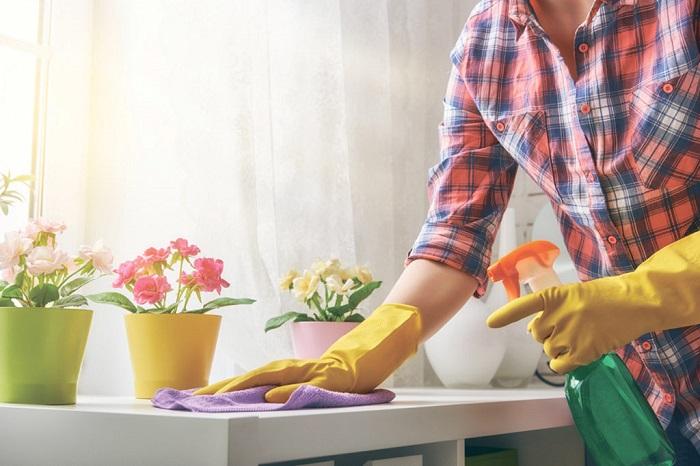 Если увидели пыль на подоконнике, сразу вытрите ее. / Фото: greenstan.ru