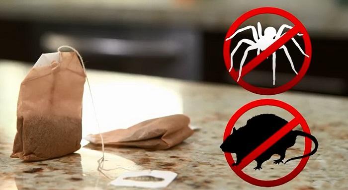 Чайные пакетики с запахом мелиссы или мяты отпугнут вредителей. / Фото: justcoolidea.ru
