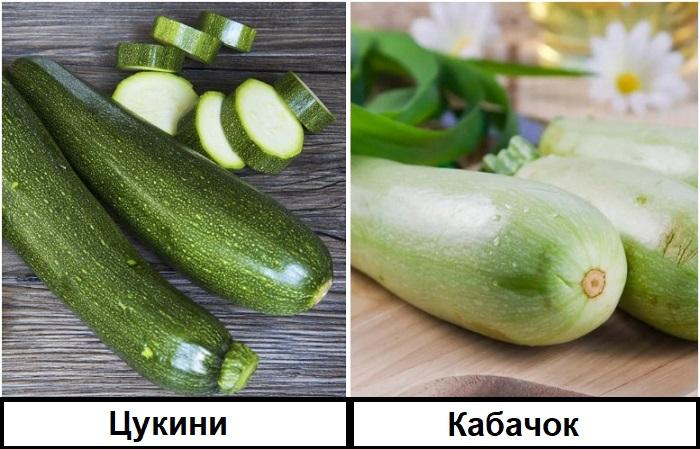 Кабачок светло-зеленый, а цукини изумрудный