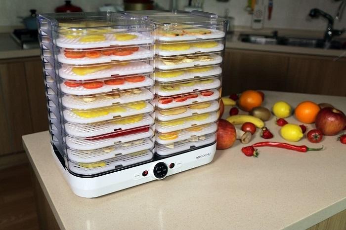 Отличная вещь в доме, если вы любите сухофрукты. / Фото: health-tehnika.ru