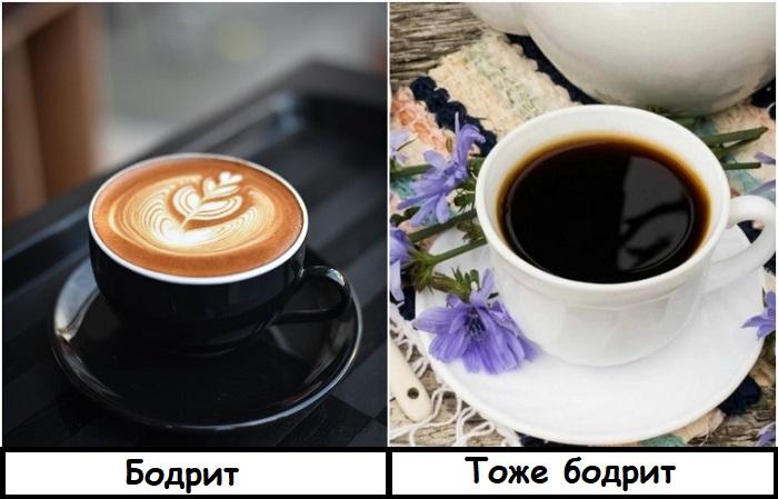 Цикорий хорошо бодрит, хотя в нем и нет кофеина