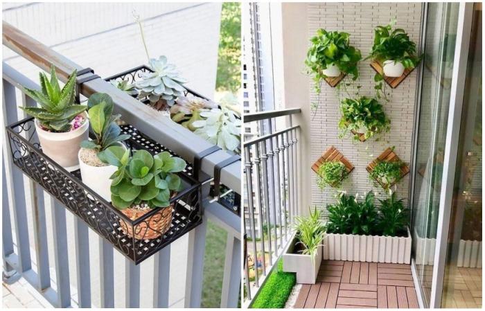 Растения можно повесить на стену или на ограждение