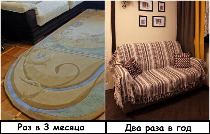 Как часто нужно чистить ковер и диван
