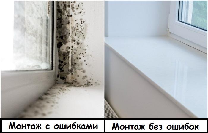 Если окна неправильно установлены, появляется плесень. / Фото: okna-biz.ru